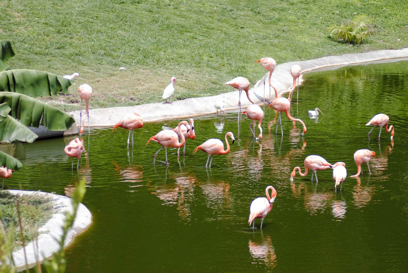 Things to do in Miami, Florida