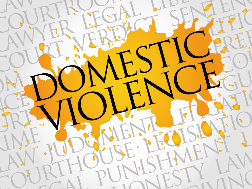 Domestic Violence Accusation in Florida